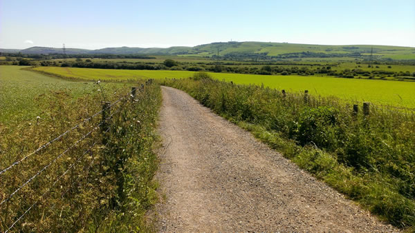 Sussex countryside view